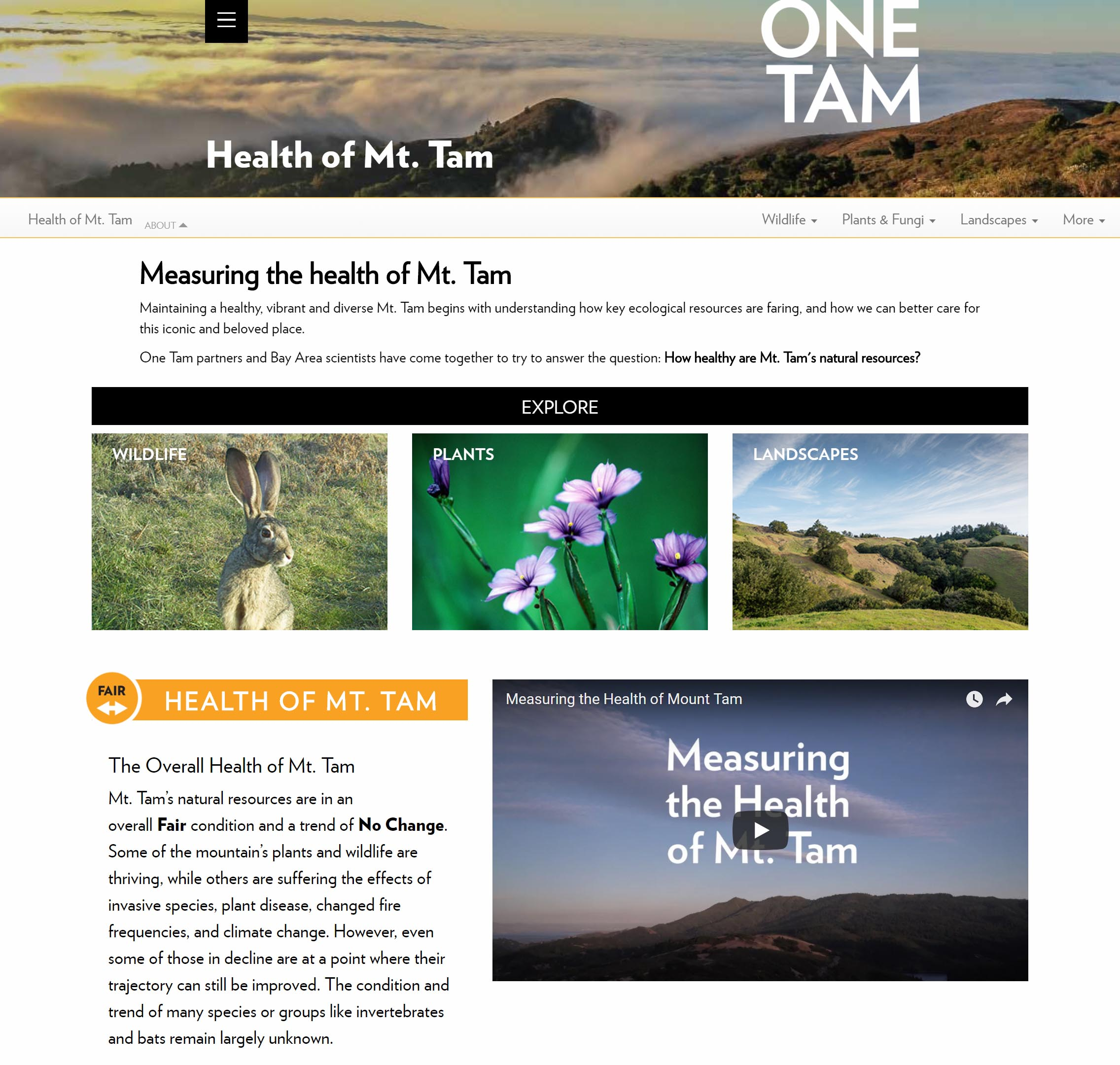 'Health of Mt. Tam' webpage screenshot